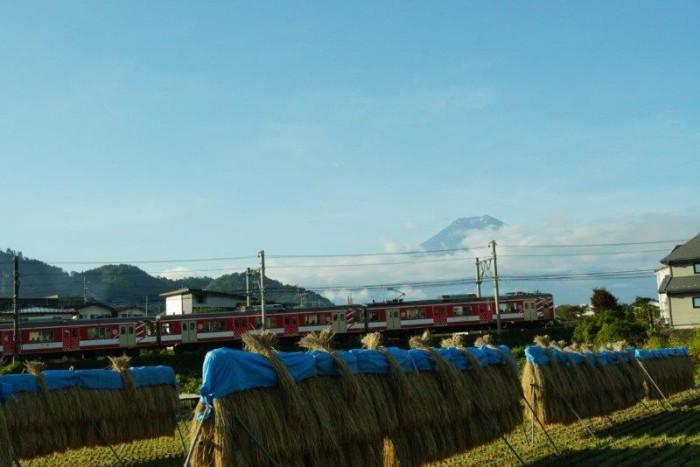Fuji-Q リサとガスパールトレインに乗っていきたかった~の巻